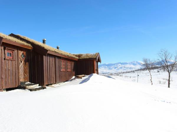 Steinkjer kommuneskoger-Ogndalsbruket KF