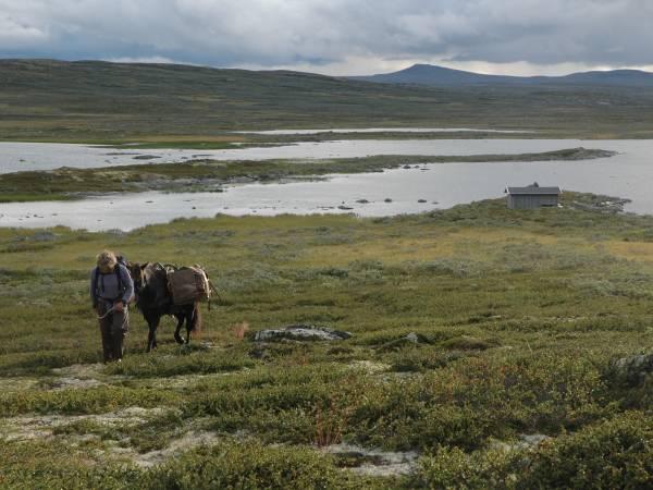 Nordre Aasberg