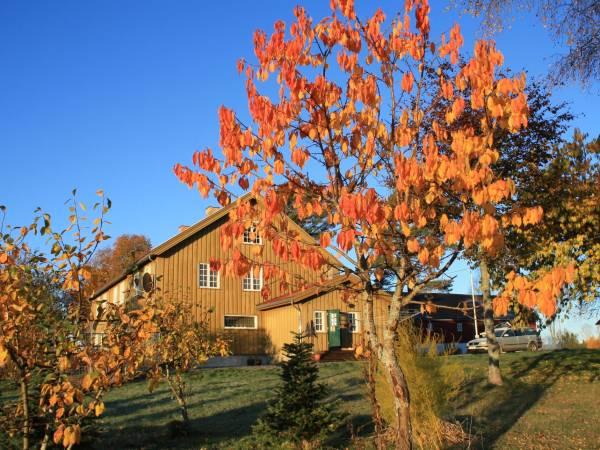 Rolstad gård