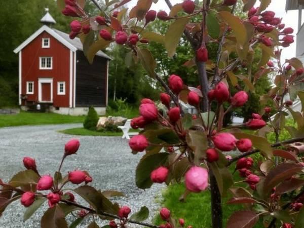 Solhus Gård