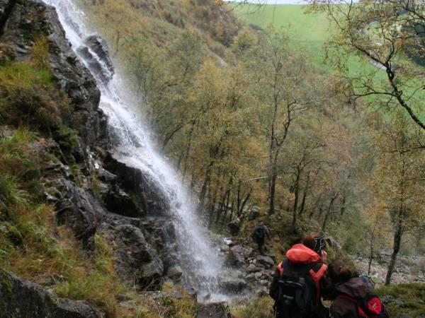 Veen Gard og Gardscamping