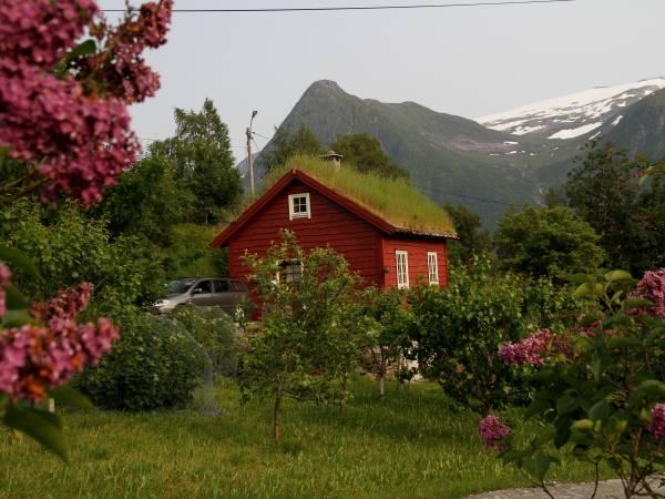 Kjøsnes Feriehytter / Jølstramat
