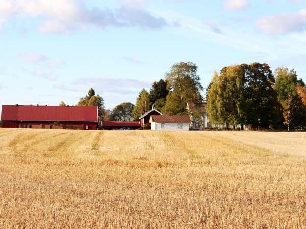 Veset gård