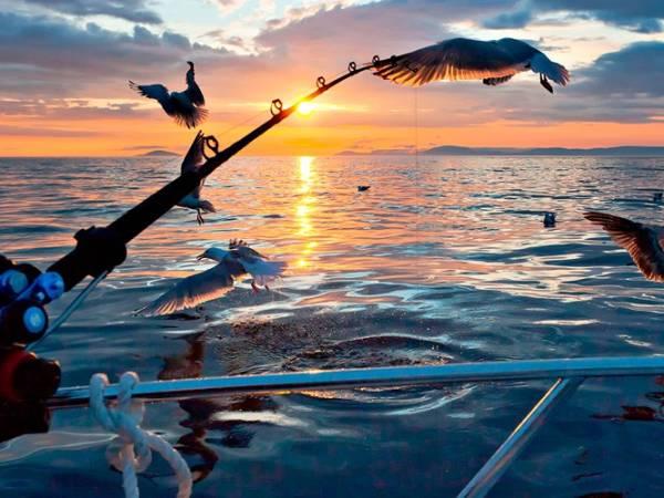 Kongshus Jakt og Fiskecamp