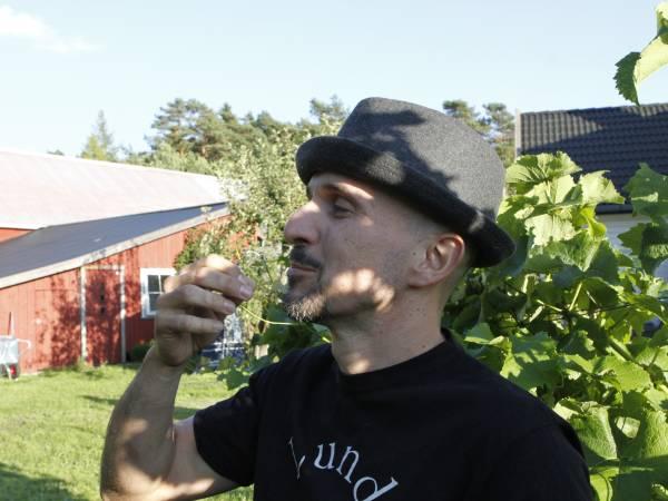 Norske Druedyrkere