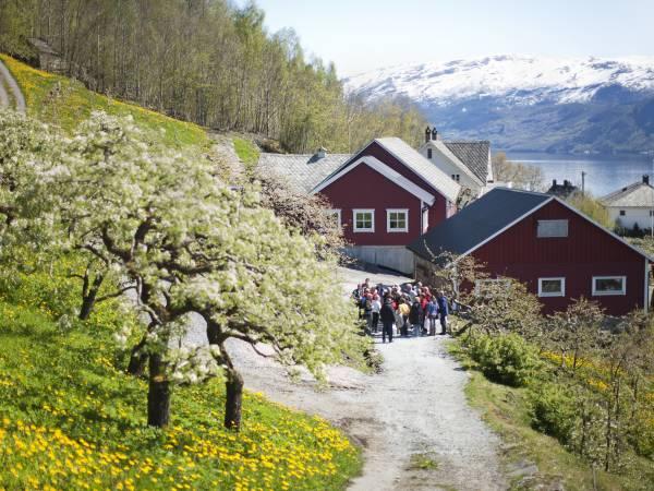 Steinstø Fruktgard