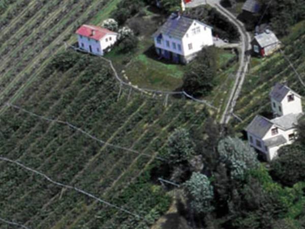Lutro Gard