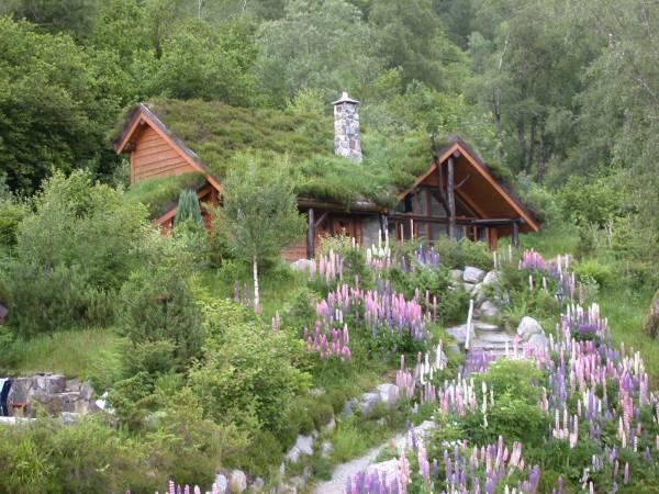 Troll Fjordhytter