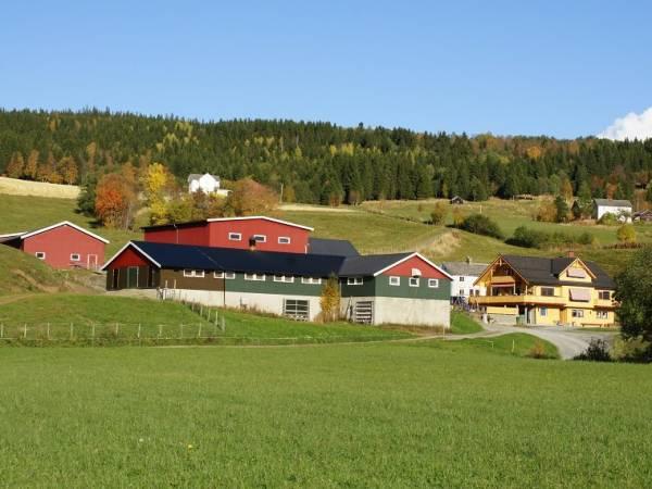 Berge Gård