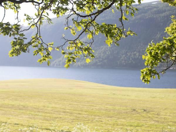 Grønset Gard