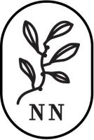 Nordre Nes