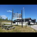 Torsetlia på Dagalifjell 1040 m.o.h.