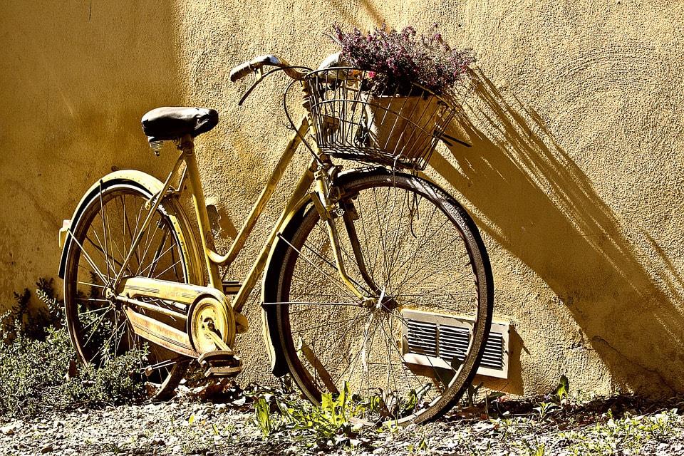 biking and life