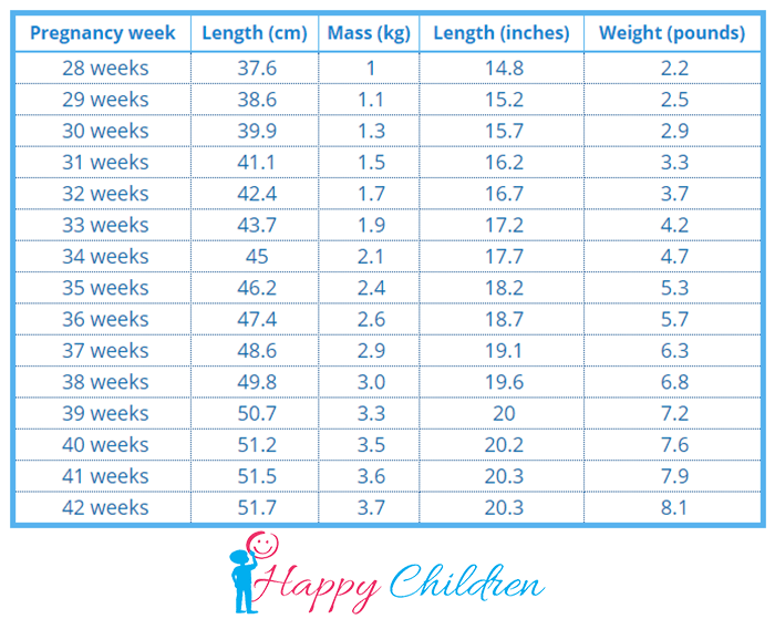 baby weight chart during pregnancy in kg