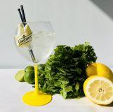 Gin och tonic 4cl