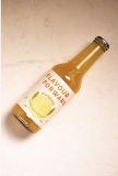 Orangeade - Flavour Forward