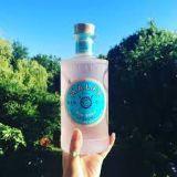 Malfy Rosa Pink Grapefruit Gin