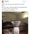 Sensitive Cat