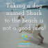 Taking a dog named Shark to the beach is not a good idea!