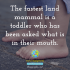 The fastest land mammal is a toddler who has been asked what is in their mouth.⁣