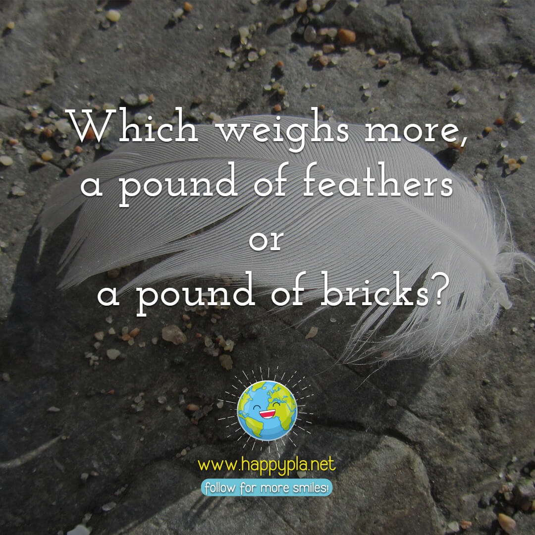 Which weighs more, a pound of feathers or a pound of bricks?