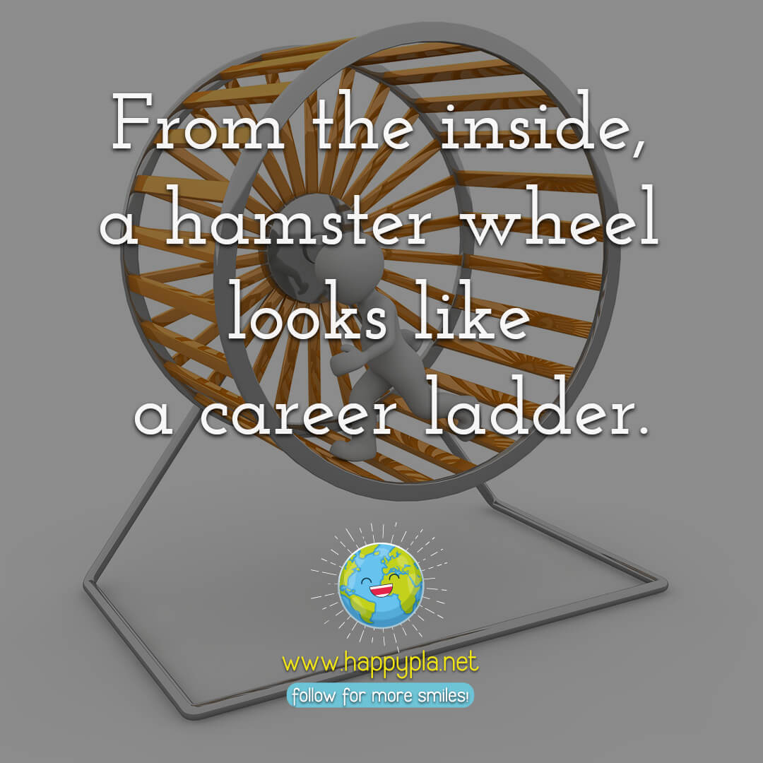 From the inside, a hamster wheel looks like a career ladder.