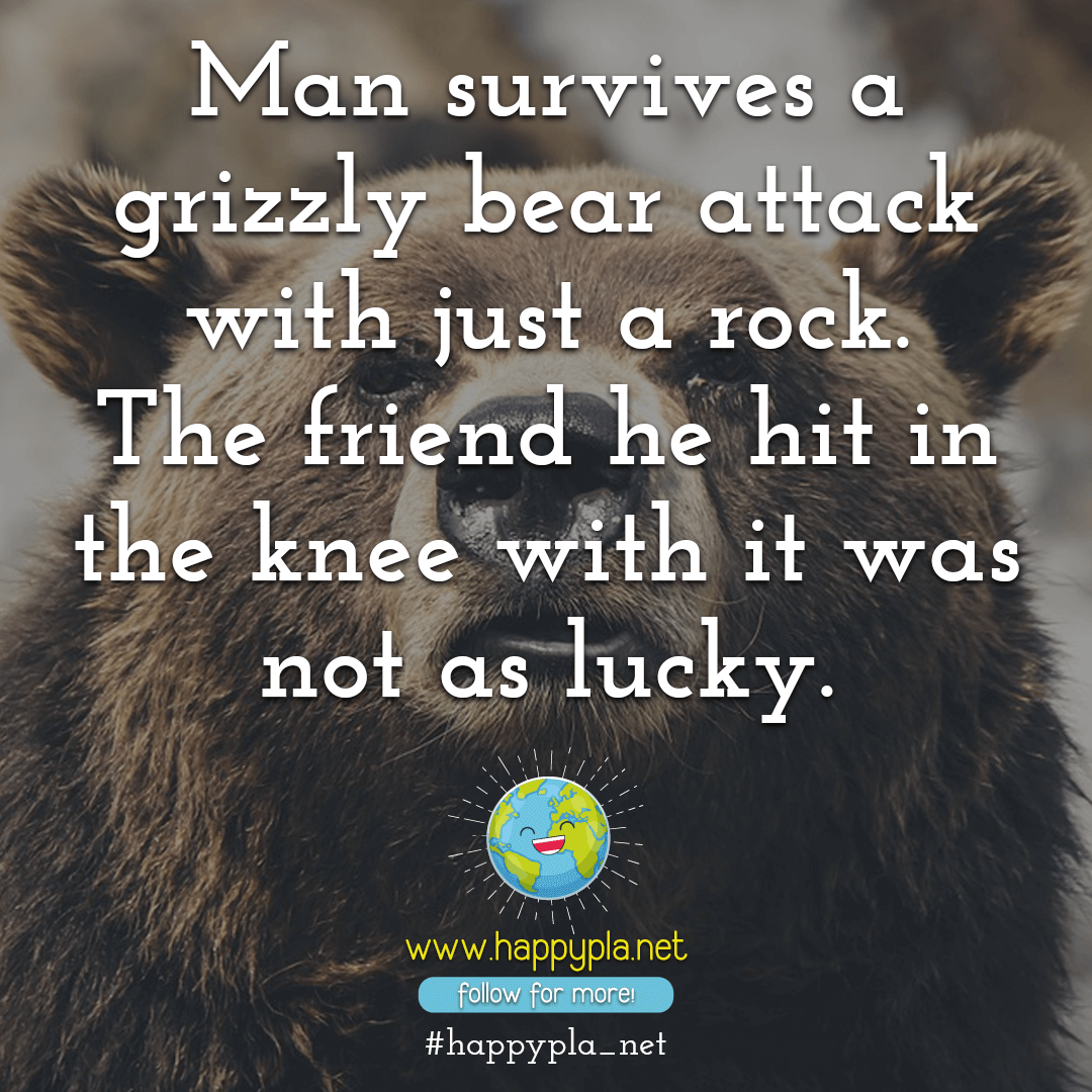 Man survives a grizzly bear attack with just a rock
