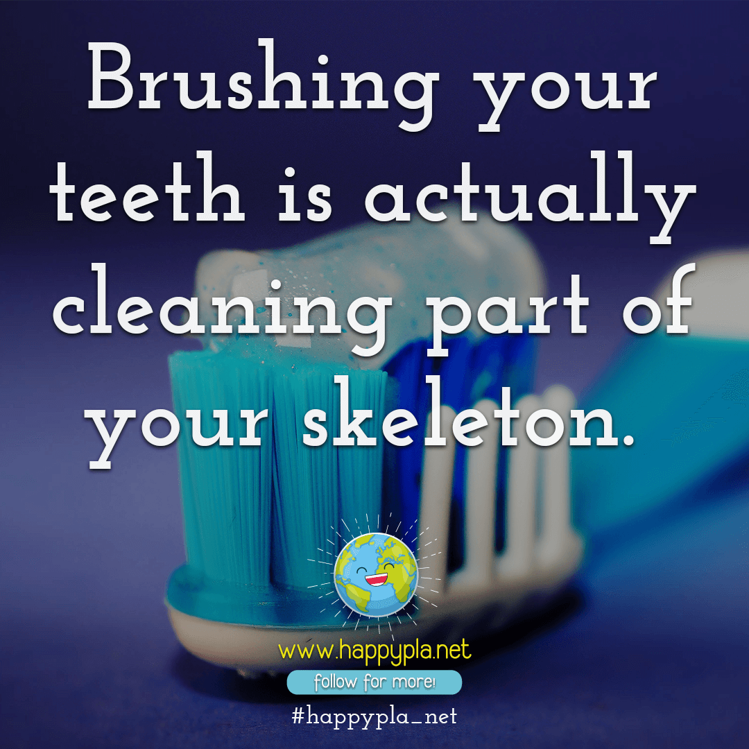 Brushing your teeth is actually cleaning part of your skeleton.