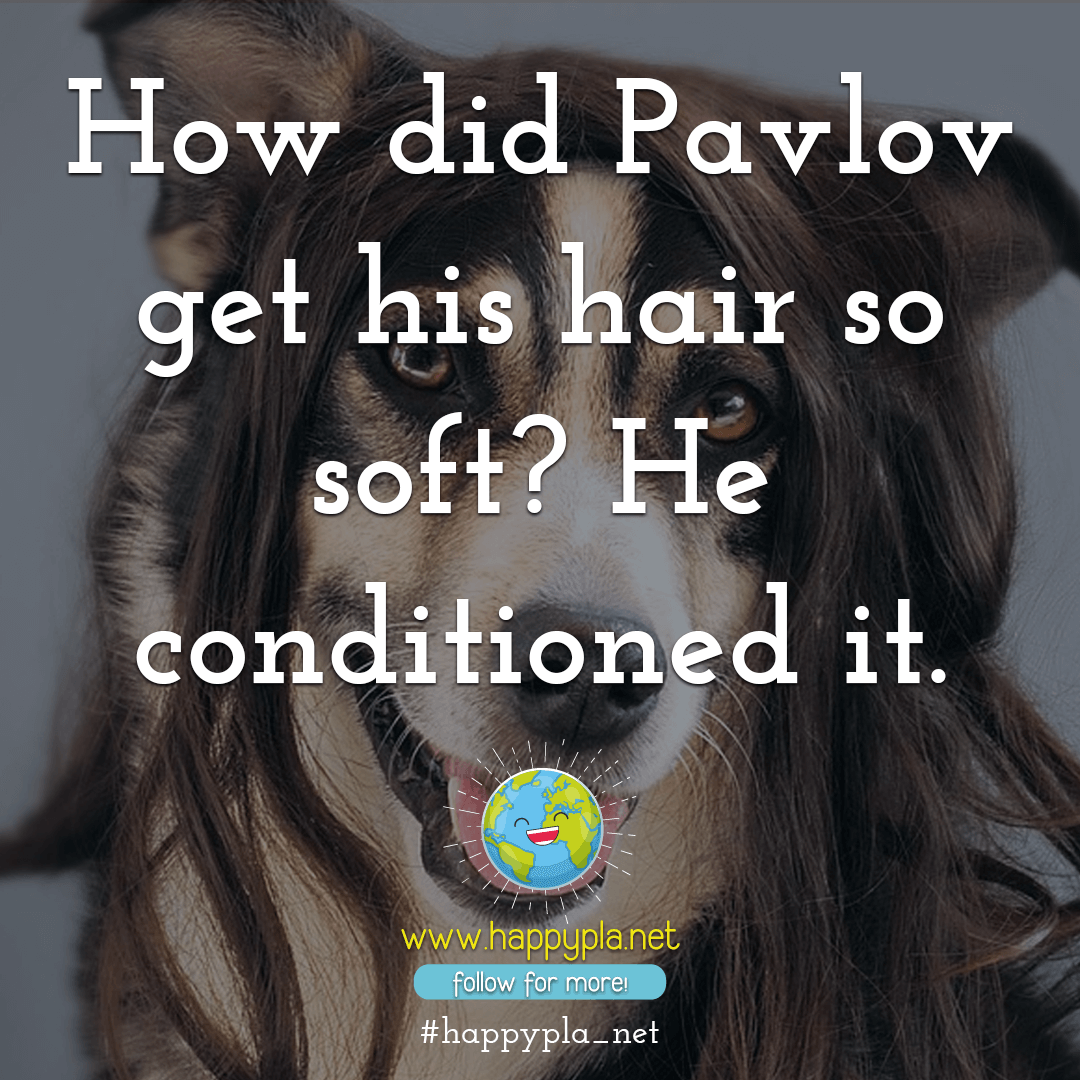 How did Pavlov get his hair so soft? He conditioned it.
