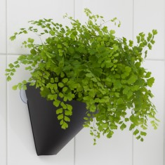 Hanging gardens planters (pack of 3)
