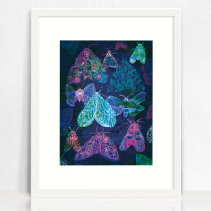 Floral Night Moths Archival Quality Art Print moth illustration