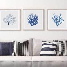 Blue Coral Hamptons Watercolour Trio Prints