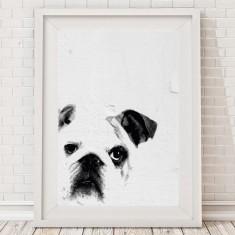 Cute Bulldog Print