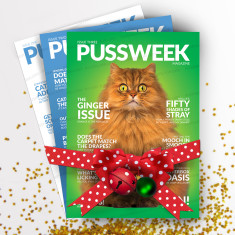 Pussweek Deluxe Meowy Catmas Pack