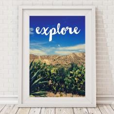 Explore desert cactus print