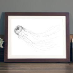 Jellyfish illustration Print