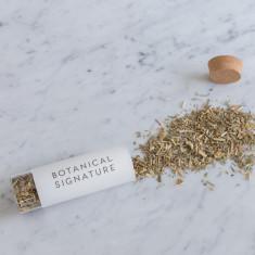 Rainforest Brew Organic Herbal Tea