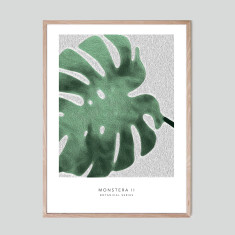 Monstera II - photographic artwork