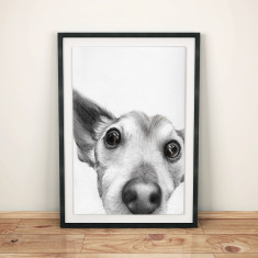 Bespoke hand-drawn pet portrait