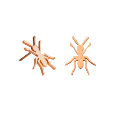 Ant stud earrings