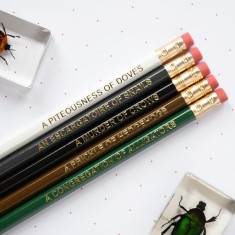 Dark animal nouns pencils (set of 5)