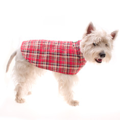 Dog raincoat in tartan
