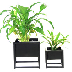 Two Black Metal Table Planters