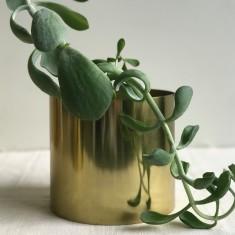 Brass Vase - Round