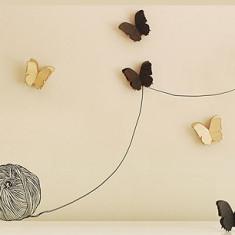 Newbies Butterflies