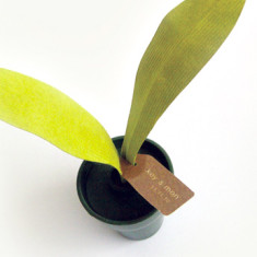 Magnetic green leaf scent diffuser