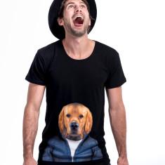 Retriever Dog men's scoop neck tee