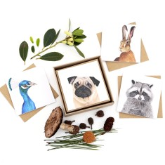Backyard /Woodland Animal Greeting Card Box Set
