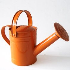 Twigz Watering Can - Orange