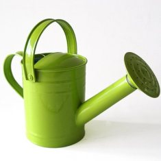 Kids' watering can in green